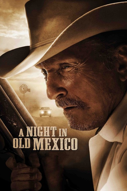 a night in old mexico cover image