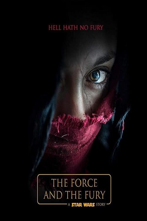 star wars: the force and the fury cover image