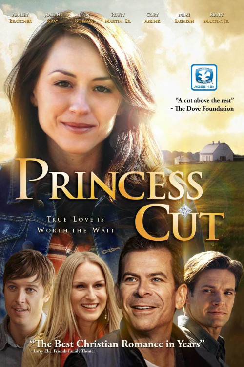 princess cut cover image