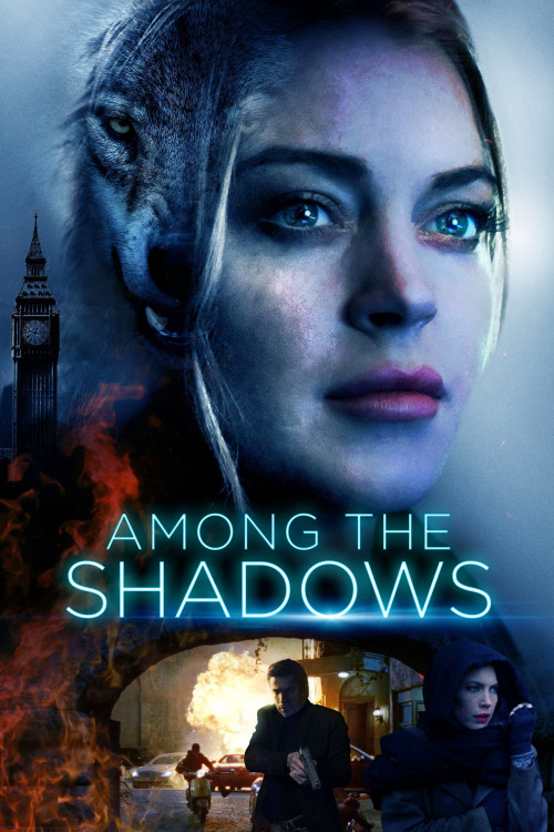 among the shadows cover image