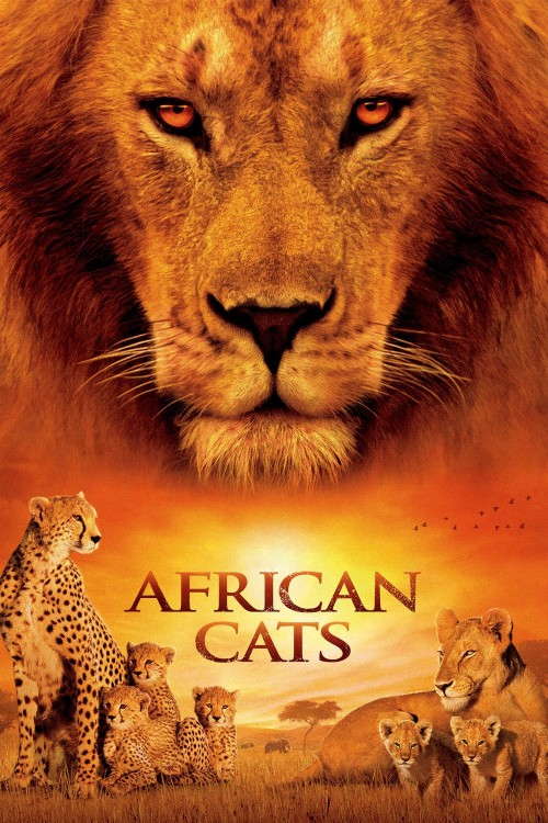 african cats cover image