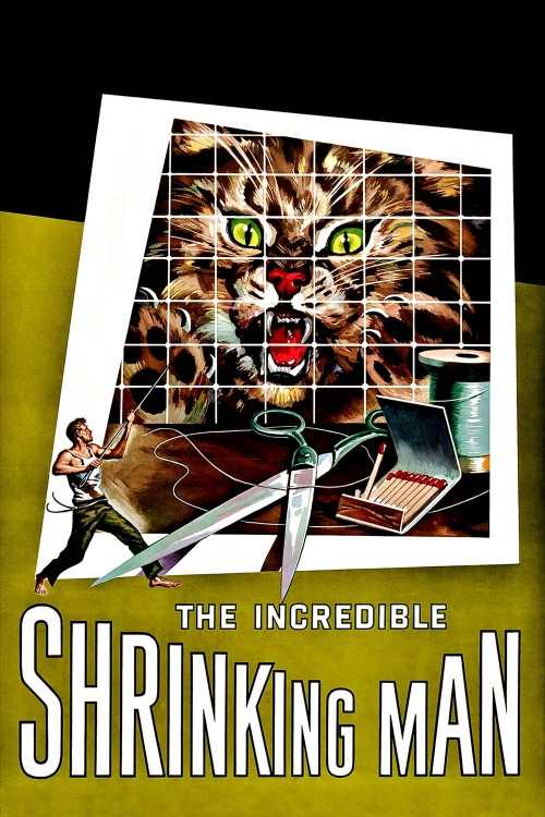 the incredible shrinking man cover image