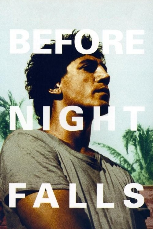 before night falls cover image