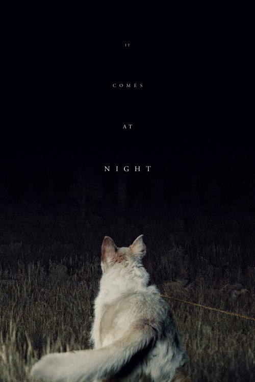 it comes at night cover image