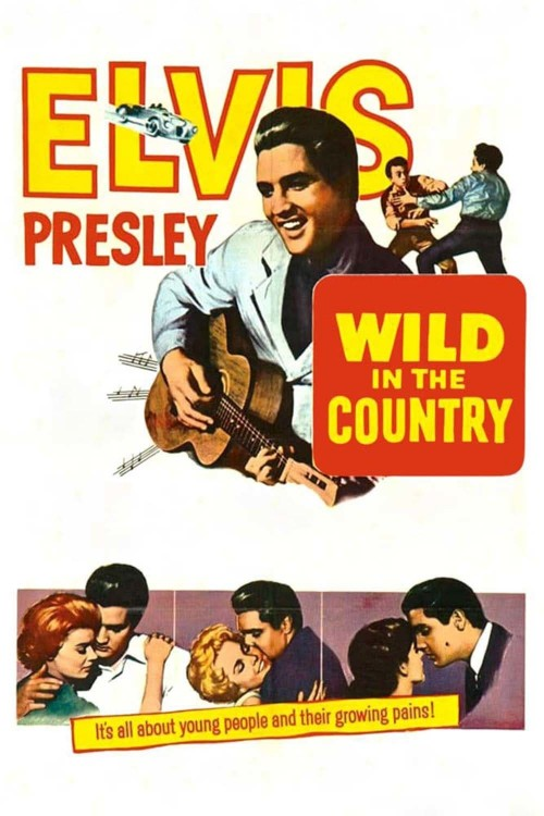 wild in the country cover image