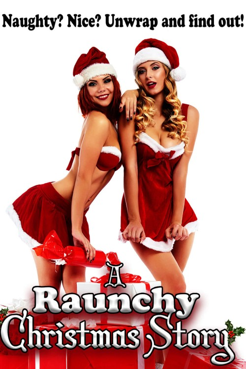 a raunchy christmas story cover image